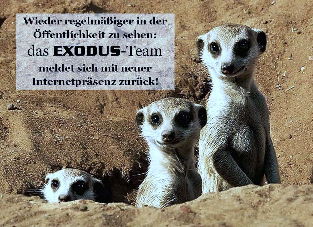 Exodus: Team is Back